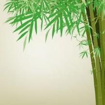 竹,背景イメージ ベクターイラスト素材