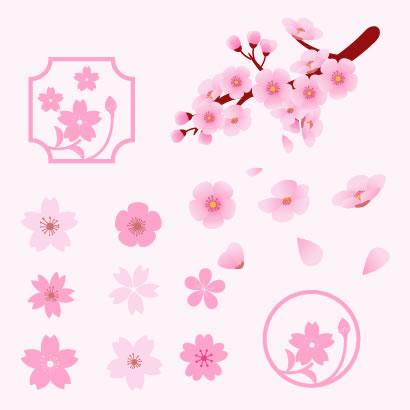 桜の花 ベクターイラスト素材